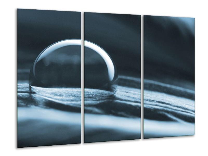 Canvas Schilderij Macro | Blauw | 120x80cm 3Luik