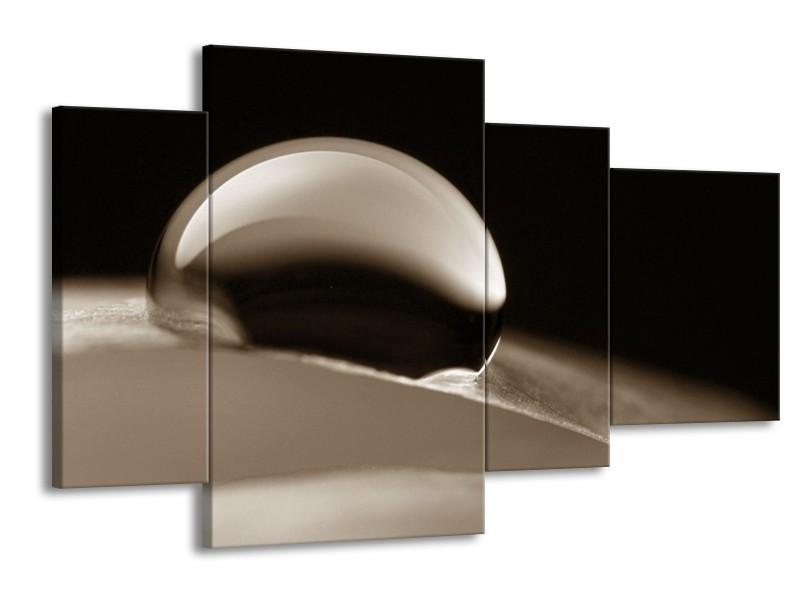 Canvas Schilderij Macro | Sepia | 120x75cm 4Luik