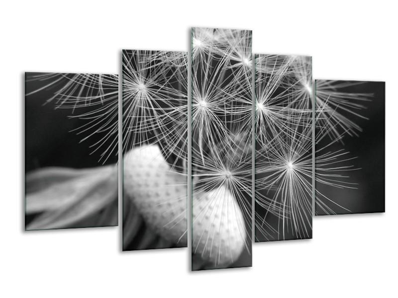 Canvas Schilderij Bloem | Zwart, Wit, Grijs | 170x100cm 5Luik