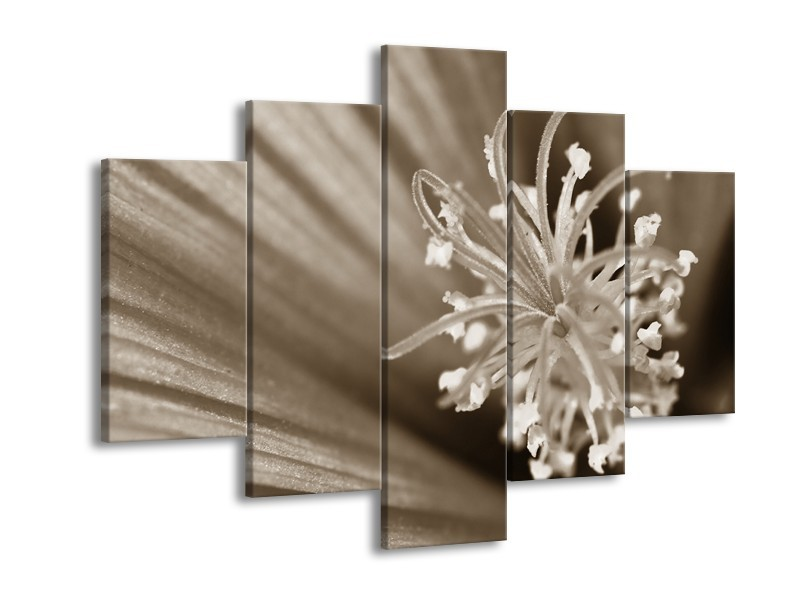 Glasschilderij Bloem | Sepia | 150x105cm 5Luik