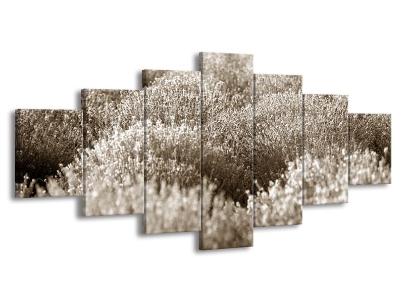 Glasschilderij Bloemen | Sepia | 210x100cm 7Luik