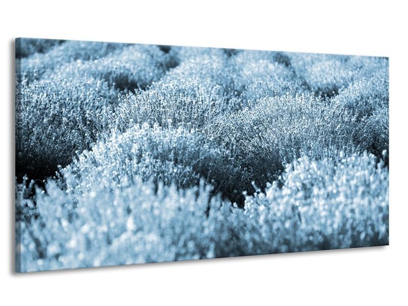Canvas Schilderij Bloem | Blauw | 170x90cm 1Luik