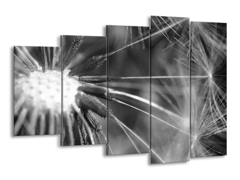 Canvas Schilderij Bloem | Grijs, Zwart | 150x100cm 5Luik