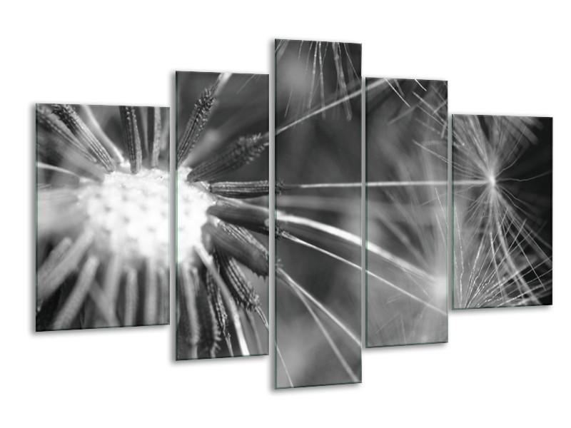Canvas Schilderij Bloem | Grijs, Zwart | 170x100cm 5Luik