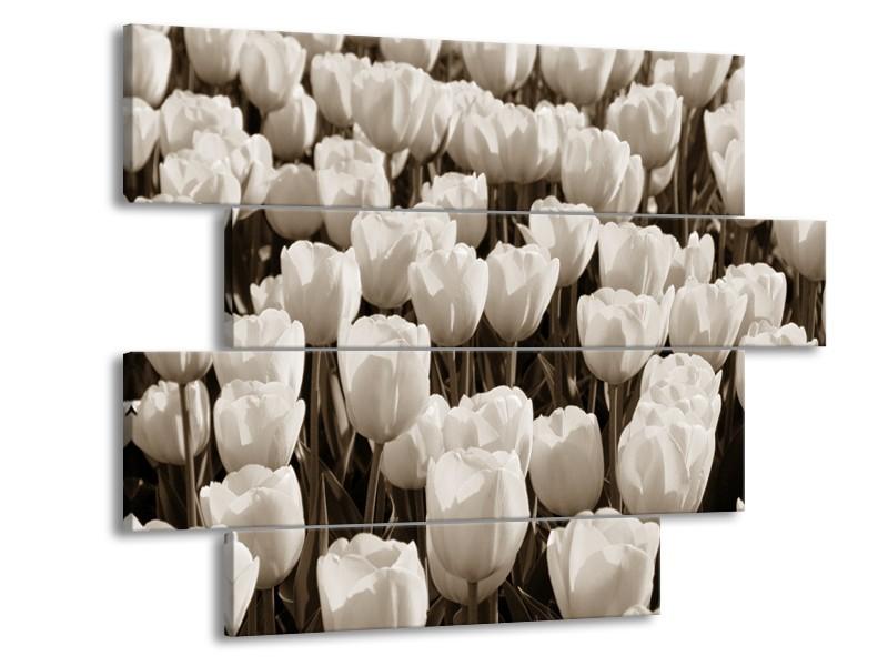 Canvas Schilderij Bloem, Tulpen   Sepia   115x85cm 4Luik