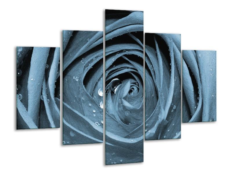 Glasschilderij Bloem, Roos | Blauw | 100x70cm 5Luik