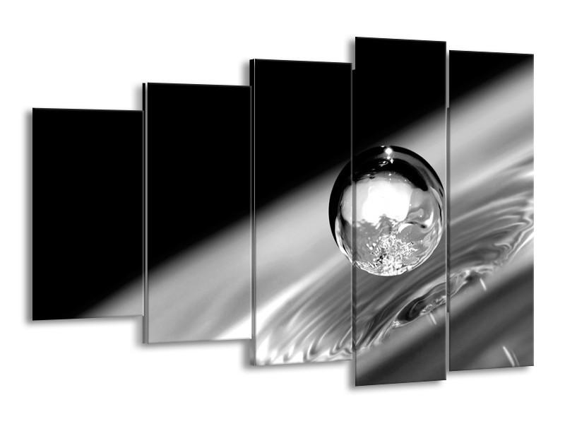 Canvas Schilderij Macro | Zwart, Grijs, Zilver | 150x100cm 5Luik