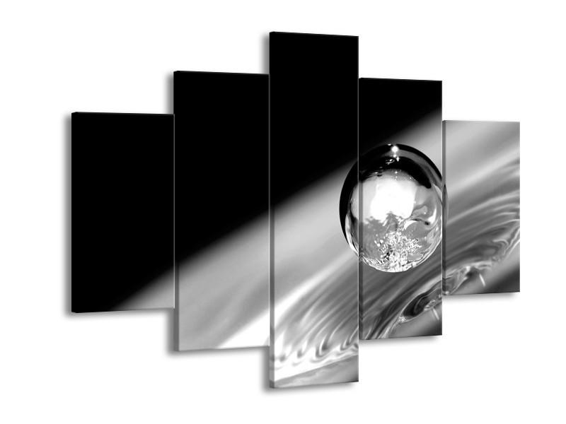 Canvas Schilderij Macro | Zwart, Grijs, Zilver | 150x105cm 5Luik
