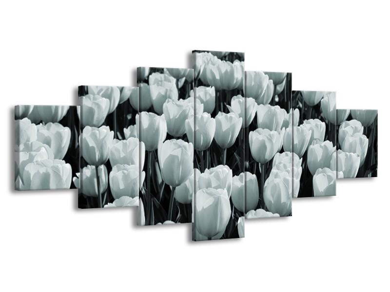 Glasschilderij Bloemen, Tulpen | Grijs, Groen | 210x100cm 7Luik