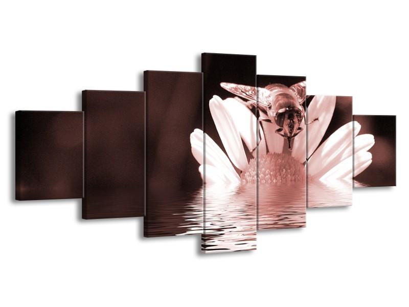 Canvas Schilderij Bloem   Bruin, Rood   210x100cm 7Luik