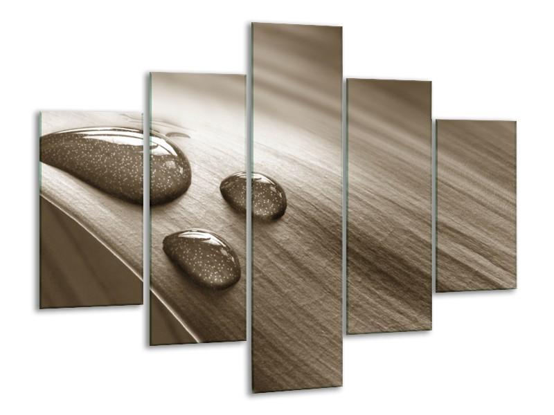 Canvas Schilderij Macro, Druppel | Sepia | 100x70cm 5Luik