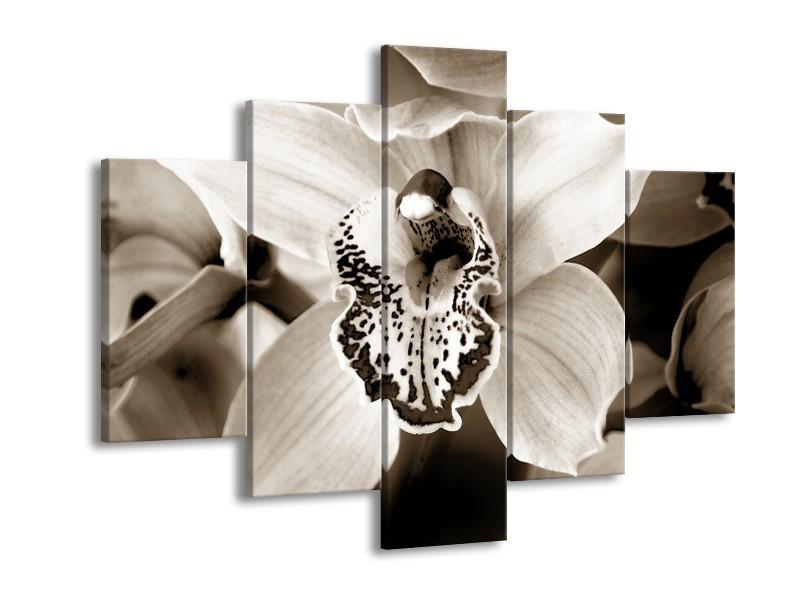 Glasschilderij Bloem   Sepia   150x105cm 5Luik