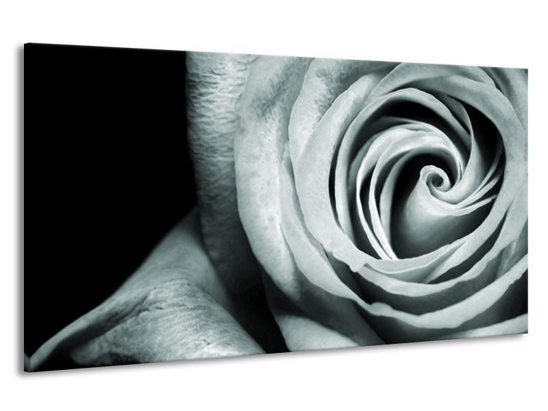 Canvas Schilderij Roos, Bloem   Grijs, Groen, Zwart   190x100cm 1Luik