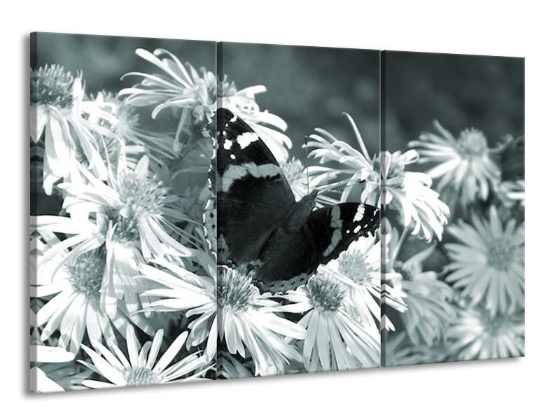 Glasschilderij Bloemen, Vlinder | Grijs, Groen, Zwart | 165x100cm 3Luik