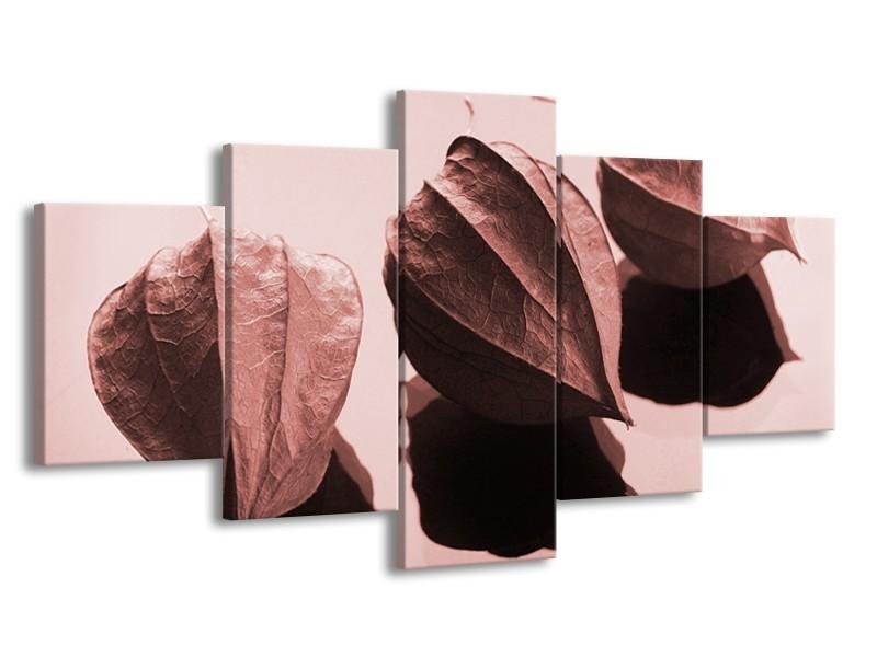 Canvas Schilderij Bloem   Rood, Bruin   150x80cm 5Luik