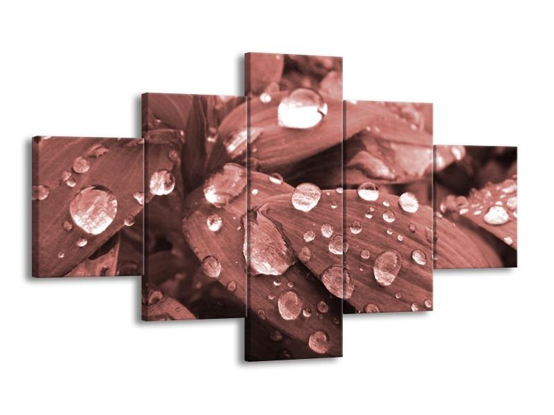 Canvas Schilderij Bloem, Druppel   Rood, Bruin   125x70cm 5Luik