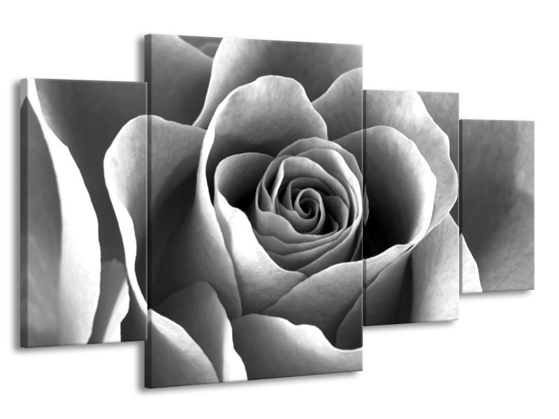 Glasschilderij Roos, Bloem | Grijs, Zwart | 160x90cm 4Luik