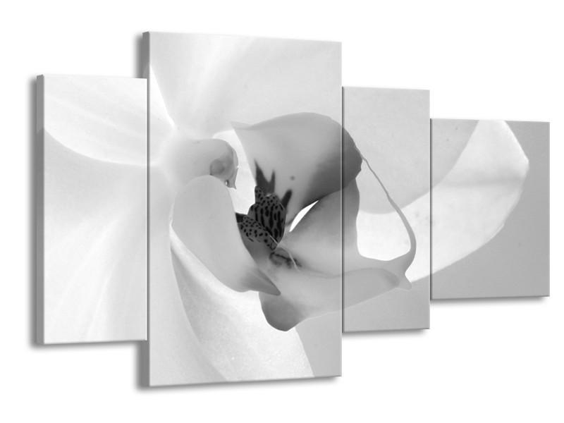 Glasschilderij Bloem | Grijs, Wit | 120x75cm 4Luik