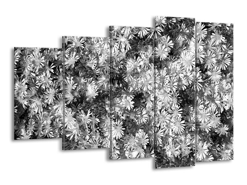 Glasschilderij Bloemen   Zwart, Wit, Grijs   150x100cm 5Luik