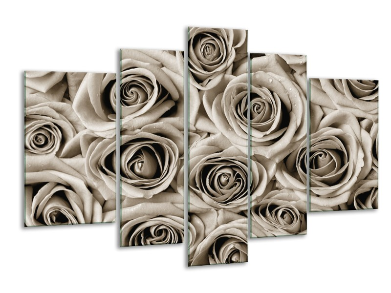 Glasschilderij Roos, Bloem | Sepia | 170x100cm 5Luik