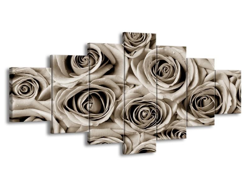 Glasschilderij Bloemen, Roos | sepia | 210x100cm 7Luik