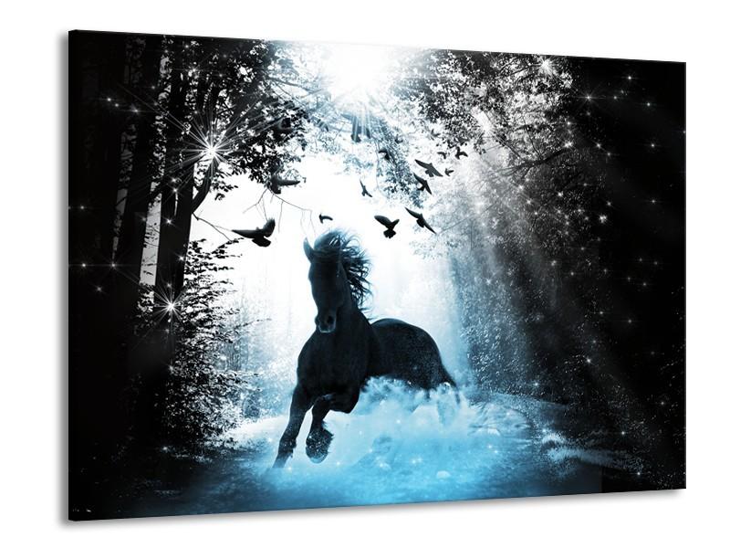 Canvas Schilderij Paard, Dieren | Blauw, Zwart, Wit | 100x70cm 1Luik