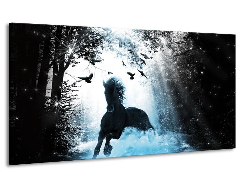 Canvas Schilderij Paard, Dieren | Blauw, Zwart, Wit | 170x90cm 1Luik