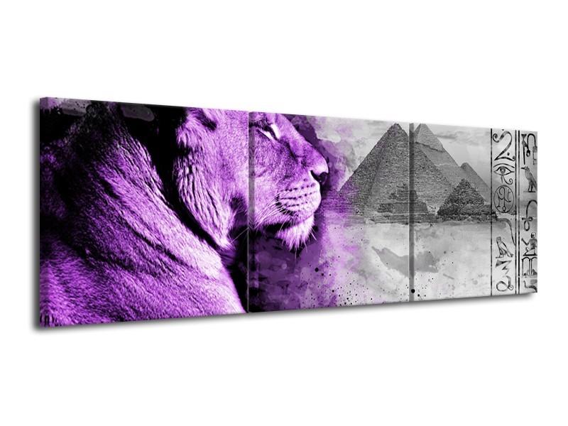 Canvas Schilderij Leeuw, Dieren | Paars, Grijs | 120x40cm 3Luik