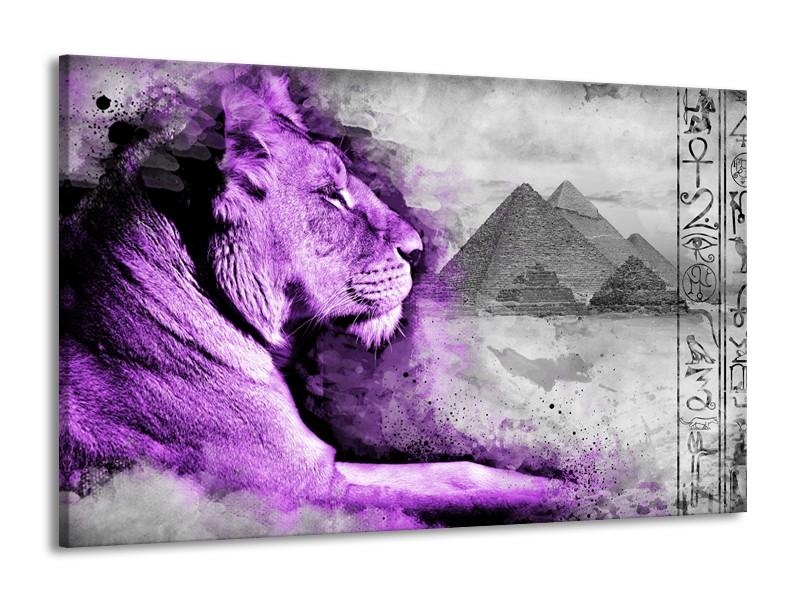 Canvas Schilderij Leeuw, Dieren   Paars, Grijs   140x90cm 1Luik