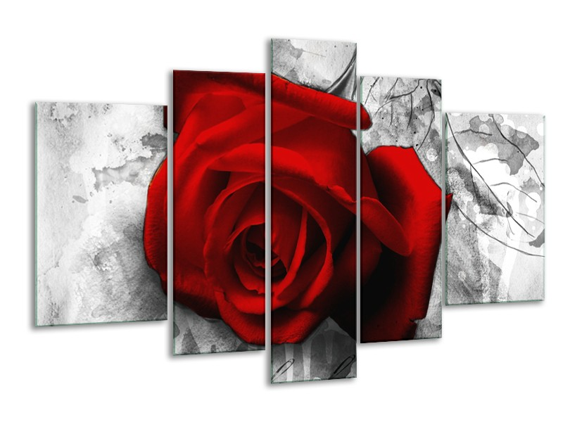 Glasschilderij Roos, Bloem | Rood, Zwart, Wit | 170x100cm 5Luik