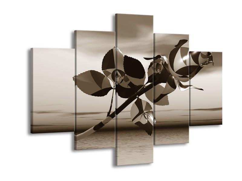 Glasschilderij Roos, Bloem | Sepia | 150x105cm 5Luik
