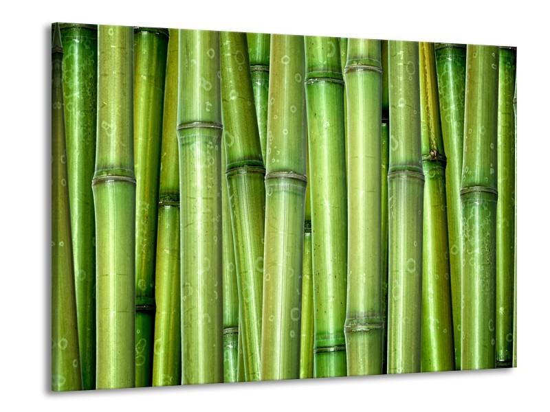 Canvas Schilderij Bamboe, Natuur | Groen | 100x70cm 1Luik