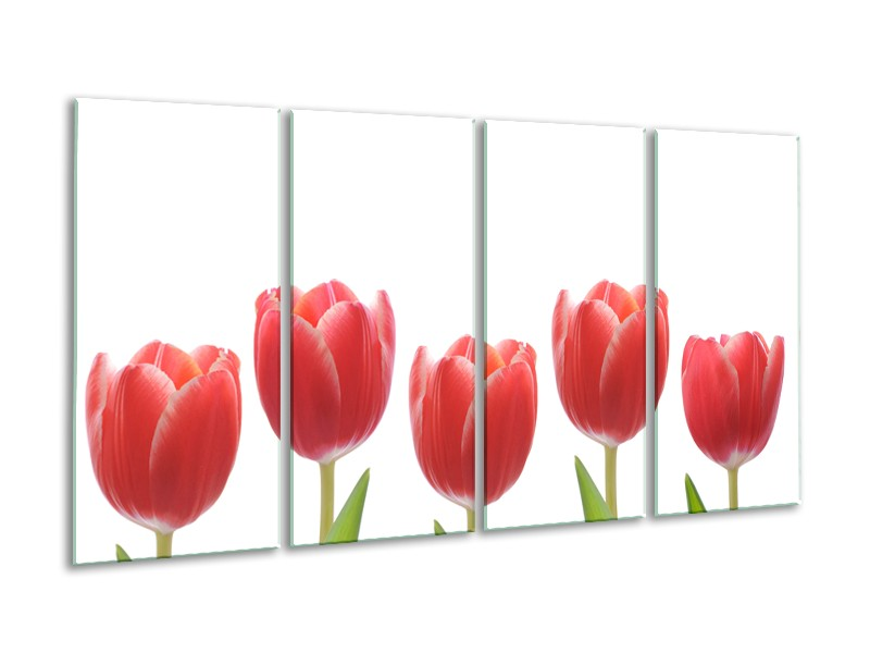 Glasschilderij Tulpen, Bloemen   Wit, Rood, Groen   160x80cm 4Luik