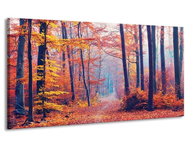 Canvas Schilderij Bos, Herfst | Oranje, Bruin, Grijs | 170x90cm 1Luik