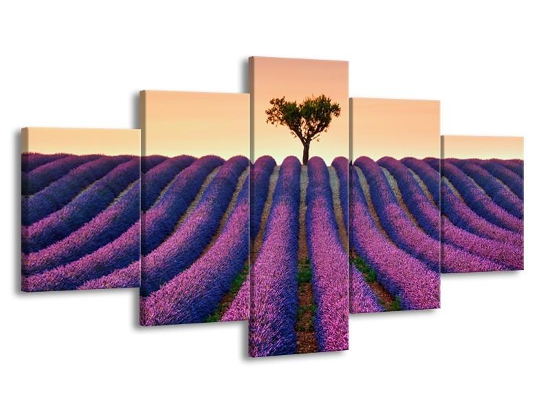 Canvas Schilderij Lavendel, Landelijk | Paars, Crème | 150x80cm 5Luik