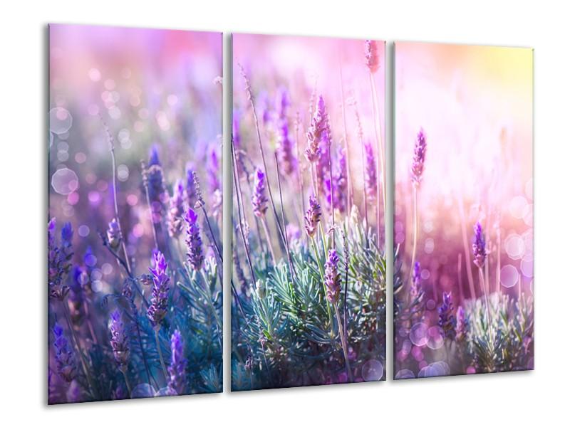 Canvas Schilderij Lavendel, Landelijk | Paars, Crème, Roze | 120x80cm 3Luik