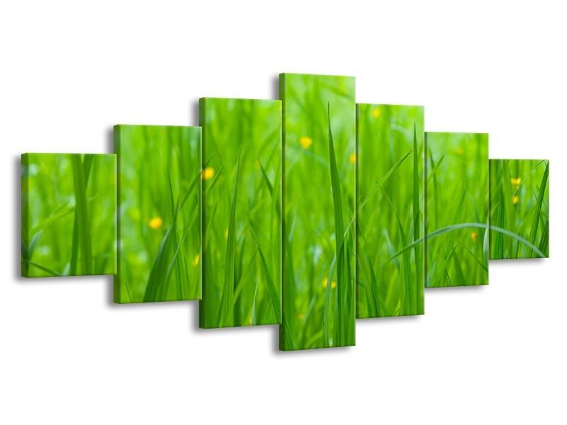 Glasschilderij Natuur, Gras | Zwart, Groen | 210x100cm 7Luik