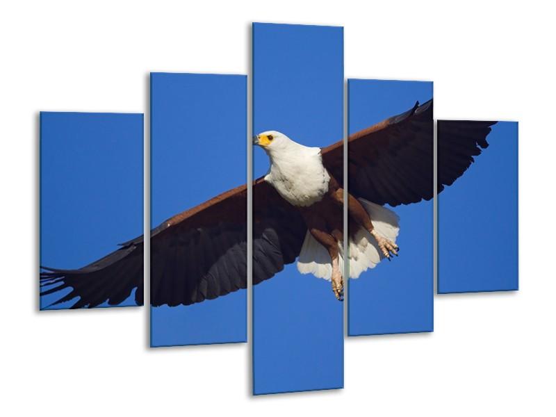 Canvas Schilderij Adelaar, Vogel   Blauw, Wit, Zwart   100x70cm 5Luik