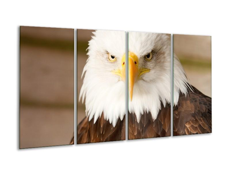 Canvas Schilderij Adelaar, Vogel | Bruin, Wit, Geel | 160x80cm 4Luik