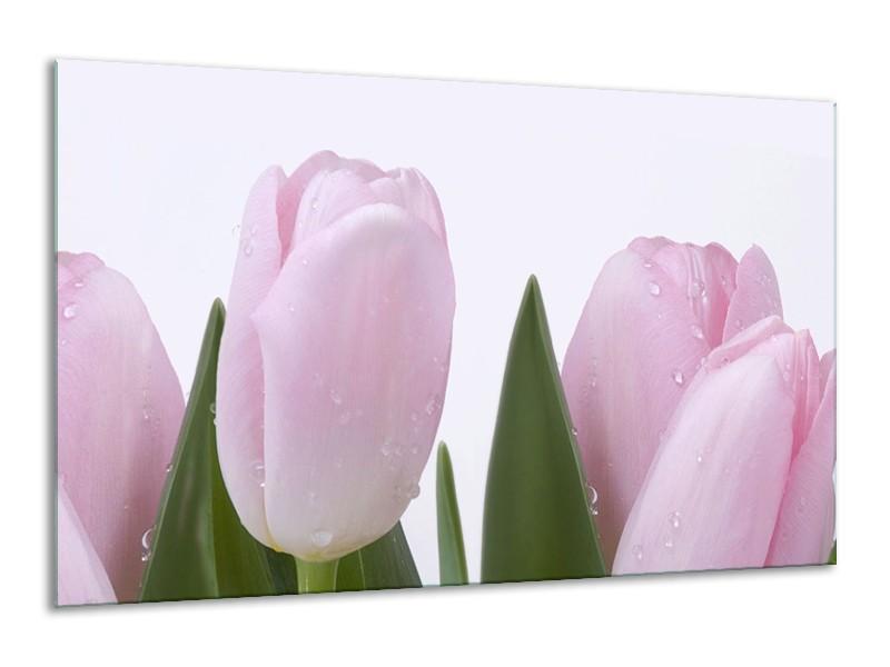 Canvas Schilderij Tulpen, Bloemen   Roze, Wit   120x70cm 1Luik