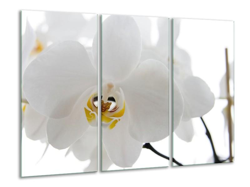 Canvas Schilderij Orchidee, Bloemen   Wit, Geel   120x80cm 3Luik