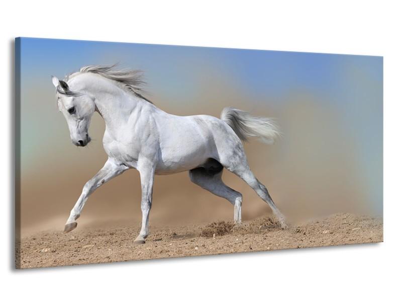 Canvas Schilderij Paard, Dieren | Crème, Blauw, Wit | 170x90cm 1Luik