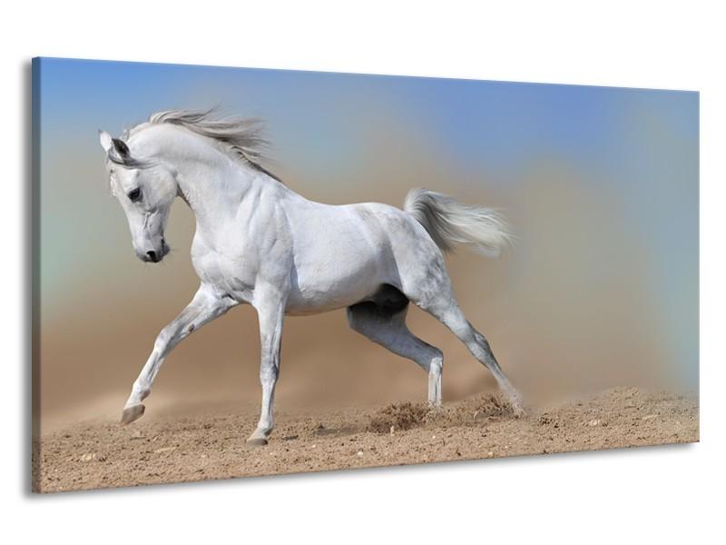 Canvas Schilderij Paard, Dieren   Crème, Blauw, Wit   190x100cm 1Luik