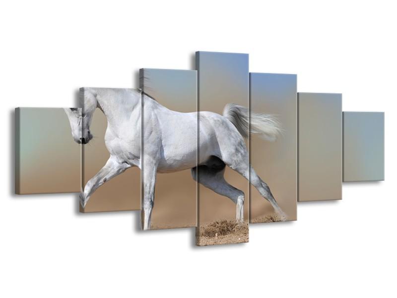 Glasschilderij Paard, Dieren | Crème , Blauw, Wit | 210x100cm 7Luik