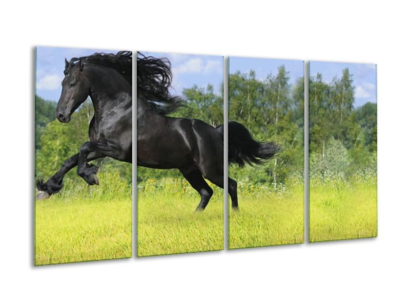 Canvas Schilderij Paard, Dieren   Zwart, Groen   160x80cm 4Luik