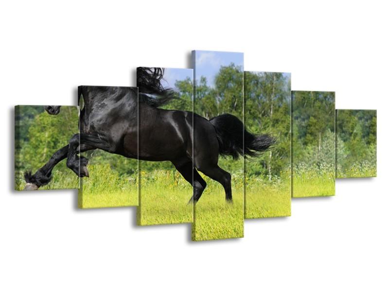 Glasschilderij Paard, Dieren | Zwart, Groen | 210x100cm 7Luik