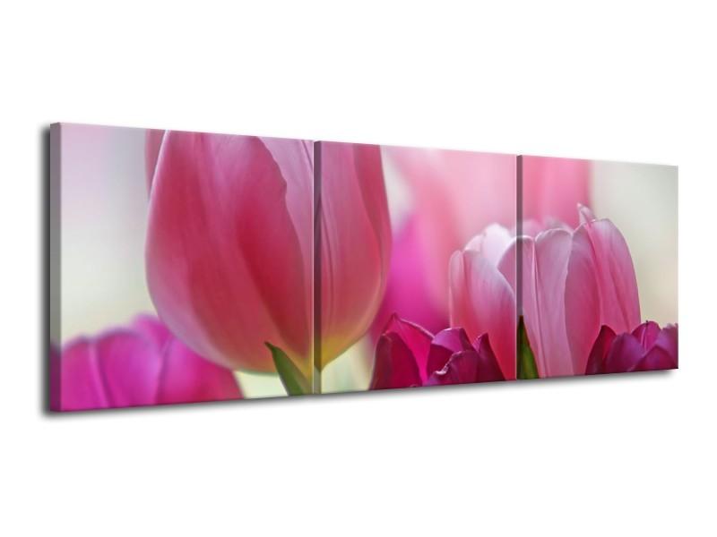 Canvas Schilderij Tulpen, Bloemen | Roze, Paars | 120x40cm 3Luik