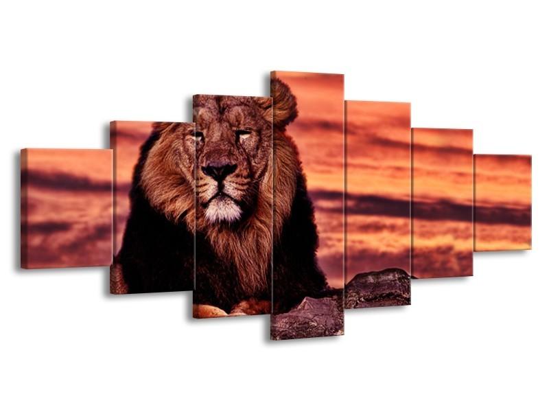 Glasschilderij Wilde Dieren | Oranje, Bruin | 210x100cm 7Luik