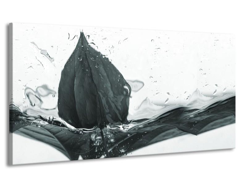 Canvas Schilderij Bloem   Grijs, Wit   170x90cm 1Luik