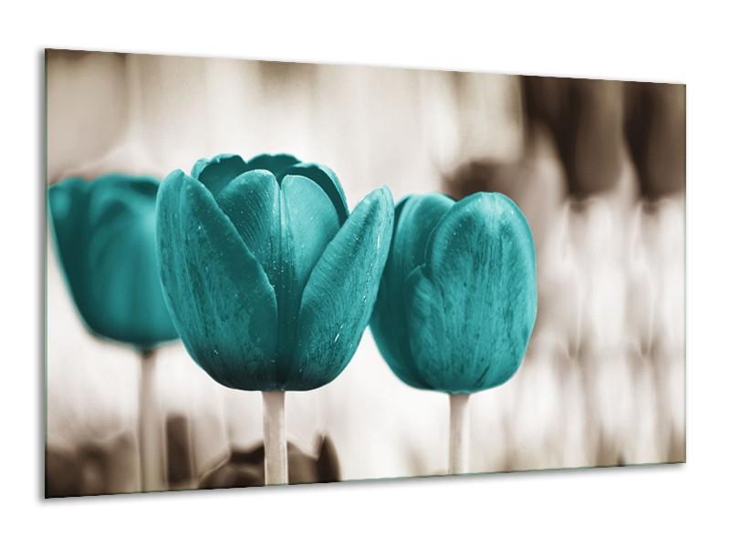 Glasschilderij Tulpen, Bloemen | Turquoise, Sepia | 120x70cm 1Luik